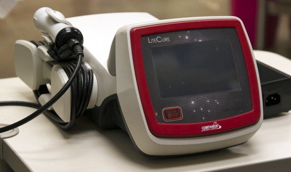 Pet Laser Therapy in Sterling, VA