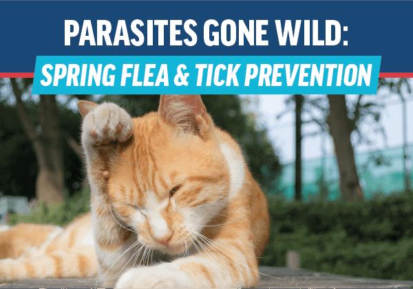 Parasites Gone Wild