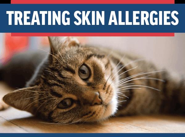 Treating Skin Allergies