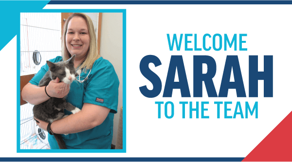 Welcome Sarah to the Team